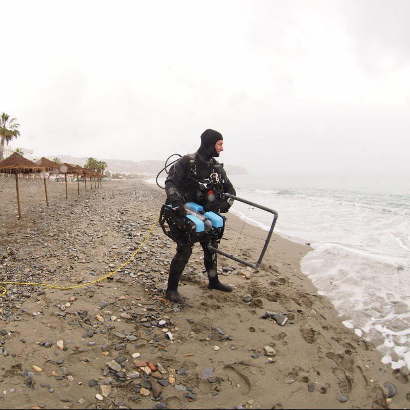 diver investigating