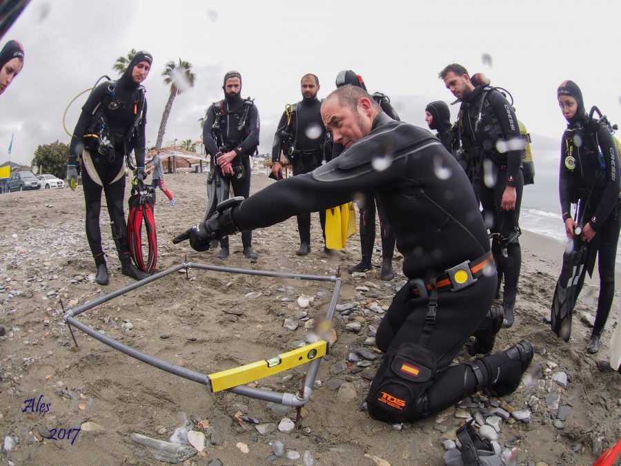 scientific divers